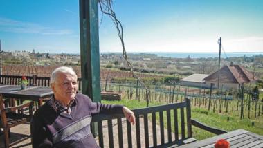 Veszhet a szőlő – Ingatlanos héják köröznek a Balaton-felvidék lankái fölött